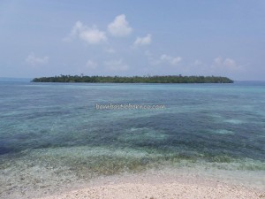 Berau, Borneo, dead coral reefs, Derawan Archipelago, dive center, holiday, Maratua island, marine life, Obyek wisata, outdoors, Tanah Surga, Tourism, tourist attraction, travel guide, vacation