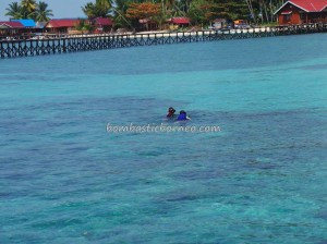 Bajau Fishing village, Berau, coral, Dive Lodge Resort, diving, East Kalimantan Timur, homestay, Indonesia, marine life, nature, Obyek wisata, Suku Bajo, tourist attraction, travel guide, underwater, vacation, white sandy beaches