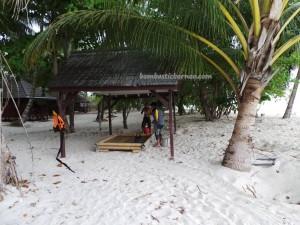 beach, Berau, Borneo, nature, Derawan Archipelago, diving spot, green turtle, hidden paradise, Manta ray, marine life, Obyek wisata, Pulau, Dive Lodge Resort, Tourism, tourist attraction, travel guide, underwater, vacation