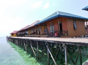Berau, Borneo, Celebes Sea, Derawan Archipelago, Dive Lodge Resort, East Kalimantan Timur, hidden paradise, homestay, marine life, nature, Obyek wisata, outdoors, pasir putih, snorkeling, Suku Bajo, Tourism, travel guide, vacation,