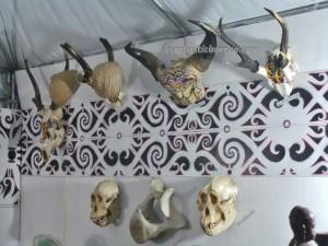 authentic, Borneo, budaya pesisir, Dayak Pedalaman, Ethnic, indigenous, indonesia, North Kalimantan Utara, Kota Tanjung Selor, native, Obyek wisata, Pekan budaya, pesta adat, Tourism, traditional, travel guide, tribal, tribe