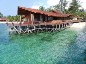 adventure, Bajau Fishing village, Berau, Dive Lodge Resort, Pulau, diving, East Kalimantan Timur, marine life, nature, Obyek wisata, outdoors, snorkeling, Suku Bajo, Tourism, tourist attraction, underwater, vacation, white sandy beaches,