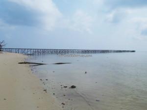 adventure, beach, Berau, Derawan Archipelago, east kalimantan timur, green turtle, hidden paradise, indonesia, Manta ray, marine life, Obyek wisata alam, outdoors, snorkeling, Tourism, travel guide, underwater, resort,