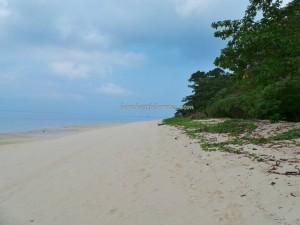 nature, adventure, Berau, Derawan Archipelago, green turtle, hidden paradise, indonesia, Manta ray, marine life, outdoors, Pulau, Dive Lodge, island Resort, Tourism, tourist attraction, travel guide, underwater, vacation