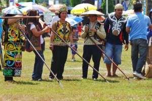 pertandingan sumpit, HUT, culture, Ethnic, event, native, North Kalimantan Utara, Obyek wisata, orang asal, pesta adat, Suku Dayak, Tourism, tourist attraction, traditional, travel guide, tribal, tribe