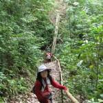 adventure, authentic, Bidayuh, Borneo Heights, event, trekking, jungle, rainforest, Kampung, Padawan, Malaysia, native, nature, outdoors, Tourism, travel, tribe, village,