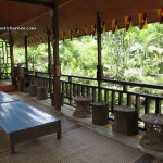 accommodation, antiques, Borneo, empurau, exotic plants, fish farm, homestay, Kampung Biawak, Kuching, lundu, nature, resort, Tourism, tourist attraction, travel guide, 民宿,古晋住宿, 沙捞越,