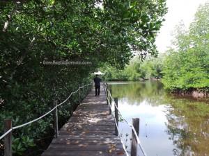 Bamboo rafting, kayaking, beach, crab catching, fishing, getaway, hidden paradise, holiday, Kampung Laya-Laya, Tuaran, Sabah, malaysia, tourist attraction, travel guide, water sports, 度假, 沙巴, 龍尾湾