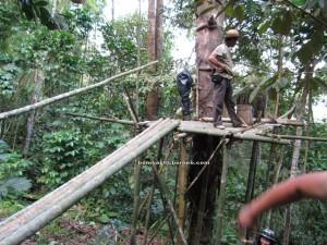 Borneo Heights, dayak bidayuh, native, ijuk, nyok, jungle trekking, rainforest, Kampung Kiding, Kuching, malaysia, padawan, nature, outdoors, tourist attraction, traditional, village, adventure,