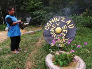 authentic, healthy, farm, indigenous, Kampung, lebah, madu, Kudat, malaysia, Matunggong, native, nature, organic food, tourist attraction, travel guide, Rungus tribe, 养蜂場