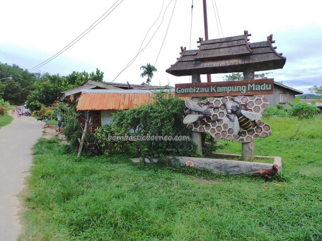 adventure, authentic, farm, lebah, madu, Kudat, Borneo, Matunggong, native, nature, organic food, tourist attraction, tourism, travel guide, Rungus tribe, 贡比绍村, 养蜂場