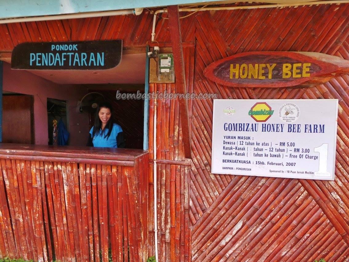 adventure, authentic, Borneo, honey bee farm, indigenous, village, lebah, native, nature, organic food, Tourism, tourist attraction, traditional, travel guide, rungus tribe, 贡比绍村, 养蜂場