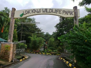 Borneo, West Coast Divsion, Taman Botani, Botanical Garden, Zoo, Clouded Leopard, Orangutan, proboscis monkey, Rhinocerous Hornbill, jungle, nature, outdoors, Tourism, tourist attraction, travel guide, 旅游景点, 沙巴野生动物园