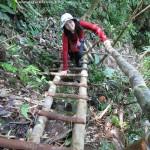 adventure, air terjun, Tanju waterfall, bamboo bridge, Highlands, homestay, jungle, rainforest, Kampung Kiding, village, Sarawak, Borneo Highlands, tour guide, traditional, tribal, tribe, Dayak Bidayuh,