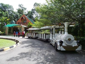 Lok Kawi Wildlife Park, hiking, Malaysia, Borneo, Penampang, Botanical Garden, Zoo, Clouded Leopard, orang utan, Malayan tiger, jungle, nature, outdoors, tourist attraction, travel guide, Useful information