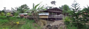 沙巴長屋, Special lodging, adventure, authentic, backpackers, culture, homestay, Kudat, malaysia, Borneo, Matunggong, Rungus, tourist attraction, traditional, travel guide, tribe, vacation, village