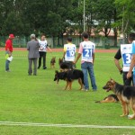 Borneo, championship, competition, event, Specialty Show, Kuching, Sarawak Kennel Association, SKA, 古晋市, 德国牧羊犬, 沙捞越, 猫城