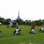 Borneo, championship, competition, Kuching, malaysia, pets lover, Sarawak Kennel Association, SKA, 古晋市, 德国牧羊犬, 沙捞越, 猫城