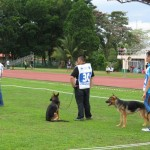 championship, competition, German Shepherd, Specialty, pets lover, Sarawak Kennel Association, SKA, 古晋市, 德国牧羊犬, 沙捞越, 猫城