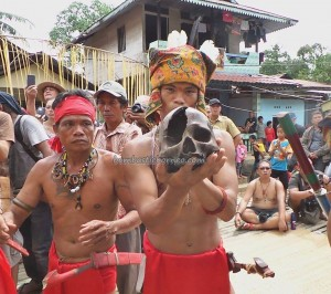 Indigenous tribe, ritual ceremony, cultural dance, dayak, Dusun Sei Biang, Bengkayang, West Kalimantan, Nyobak'ng, gawai festival, skull feeding, tengkorak, wisata budaya, tourist attraction, travel guide, traditional, crossborder, backpackers,