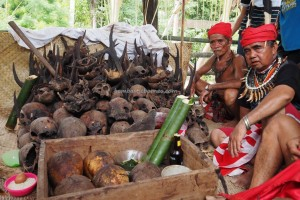 Indigenous tribe, culture, wisaa budaya, dayak, tribal village, Desa Bengkawan, Borneo, Indonesia, Kalimantan Barat, nyobeng, paddy harvest festival, cleansing, tengkorak, tourist attraction, traditional, transborder, backpackers,