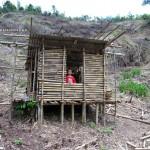 adventure, outdoor, hiking, Mureh waterfall, authentic village, Borneo, dayak bidayuh, native, tribal, Dusun Gun Tembawang, Kalimantan Barat, Kampung Sapit, Tourism, crossborder, travel guide,