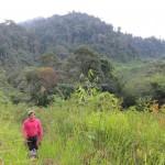 outdoor, nature, hiking, rainforest, air terjun, Ban Buan Kukuot waterfall, backpackers, Highlands, native, Kuching, Padawan, Malaysia, tourist attraction, travel guide, 沙捞越瀑布, kampung