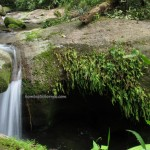 adventure, outdoor, nature, trekking, jungle, rainforest, air terjun, Borneo Heights, village, Kuching, Padawan, Malaysia, Tourism, travel guide, 沙捞越瀑布, Sarawak,