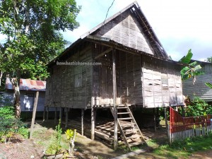 authentic, indigenous, Borneo, Central Kalimantan, Indonesia, Desa Tumbang Malahoi, Gunung Mas, Rungan, Dayak Ngaju, native, homestay, Obyek wisata, Traditional, Tourism, tribe, village