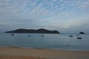 Oriental pied hornbill, family holiday. vacation, laut, fishing village, Pulau, Sea View Resort, tourist attraction, guide, 旅游景点, 邦咯岛, 霹靂州, 马来西亚