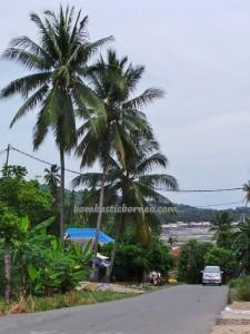 Sarang Tiung, Pantai Gedambaan, Beach, Kalsel, Kotabaru, Pulau, nature, objek wisata, outdoors, tourism, tourist attraction, village, 南加里曼丹, 婆罗州
