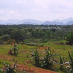 adventure, nature, outdoors, banjar, Tanah Bumbu, Borneo, Kalsel, Karst topography, Obyek wisata, Tourism, tourist attraction, travel guide, village, 南加里曼丹, 婆罗州