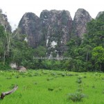 Limestone Hills, caves, hamparan bukit kapur, adventure, nature, outdoors, Cantung, South Kalimantan, conservation, tourism, ecowisata, travel guide, 婆罗州, 南加里曼丹, 石灰岩山