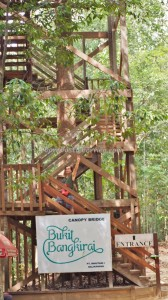 Bukit Bangkirai National Park, Kota Balikpapan, Borneo, Indonesia, East Kalimantan, Kutai Kartanegara, Samboja, canopy bridge, Jembatan gantung, primary jungle, rainforest, obyek wisata alam, Tourism, tourist attraction, travel guide,