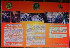 Borneo, Indonesia, East Kalimantan, Kutai Kartanegara, Samboja, canopy bridge, Jembatan gantung, conservation, hutan primer, Meranti, Nature Reserve, objek wisata alam, Tourism, tourist attraction, 东加里曼丹旅游景点