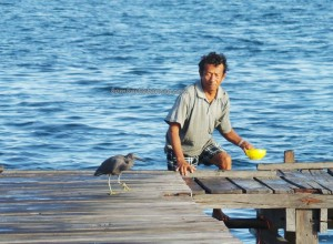 Island, nature, fishing, destination, Holiday, vacation, Borneo, East Kalimantan, Obyek wisata, travel guide, Tourism, tourist attraction, white sandy beaches, pasir putih, alam,