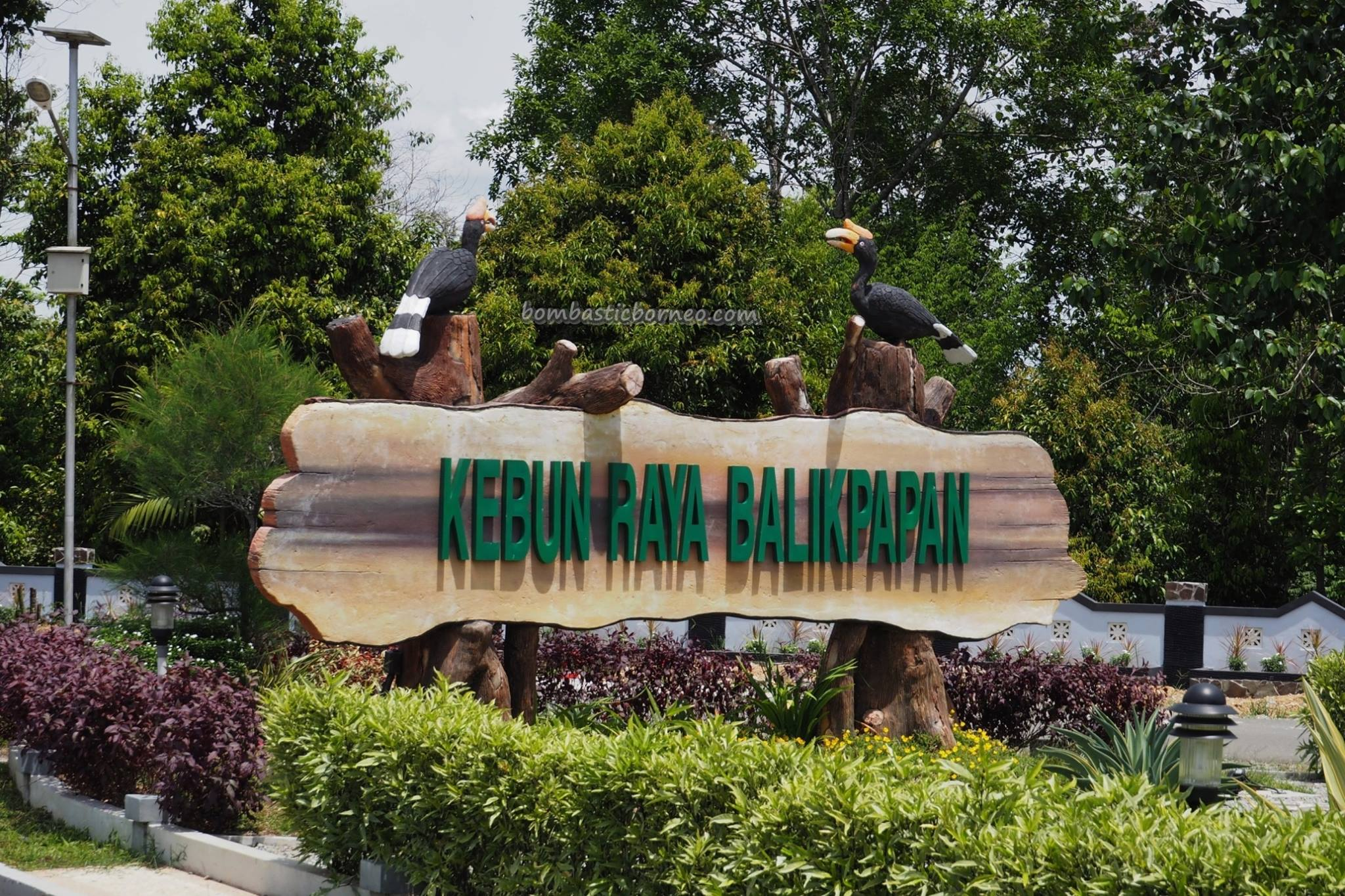 outdoors, backpackers, Kota, Borneo, East Kalimantan, belian park, botanic garden, conservation, Hutan Lindung Sungai Wain, Nature Reserve, Pusat Konservasi, Tourism, tourist attraction, travel guide,