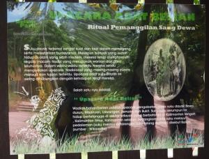 outdoors, backpackers, Kota, Borneo, Indonesia, belian park, botanic garden, conservation, Hutan Lindung Sungai Wain, Nature Reserve, Pusat Konservasi, ecotourism, tourist attraction, travel guide,