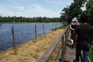 outdoors, backpackers, Kalimantan Timur, Hutan Lindung, river, primary jungle, mangrove forest, wildlife, Pusat Konservasi, ecotourism, tourist attraction, travel guide, objek wisata alam, bekantan,