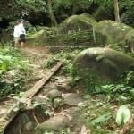 Kampung, authentic, Bau, Kuching, Malaysia, Borneo, 沙捞越, nature, jungle trekking, native, tribe. traditional, travel guide, Buah Belimbing, wild fruits,