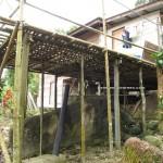 authentic, Reservoir, Bau, Kuching, Malaysia, Borneo, 沙捞越, jungle trekking, native. traditional, Buah Belimbing, wild durian, local fruits,