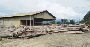 rumah panjang, logging, longhouse, village, empangan, Sungai, Belaga, Kapit, Malaysia, Dayak Penan, native, travel guide, 沙捞越婆罗州