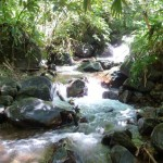 jungle trekking, adventure, nature, outdoor, air terjun, village, flora, Borneo, Serian, native, 沙捞越, Tourism, tourist attraction, traditional,