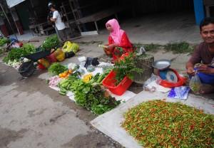 authentic, indigenous, backpackers, Dayak Kanayatn, native, Ethnic, Landak, Kampung Budaya, tradisional, Pasar, local market, Obyek wisata, Tourism, travel guide,