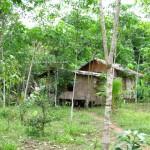 trekking, adventure, nature, outdoor, backpackers, dayak bidayuh, Kampung Gumbang, Kuching, Malaysia, Bau, Pangkalan Tebang, 沙捞越, village, native,