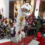 Plaza Merdeka, Borneo, Sarawak, Kuching, Malaysia, championship, competition, traditional, Chinese culture, lion dance, pertandingan, tarian singa, Singapore Tian Eng, 天鹰, 舞狮,