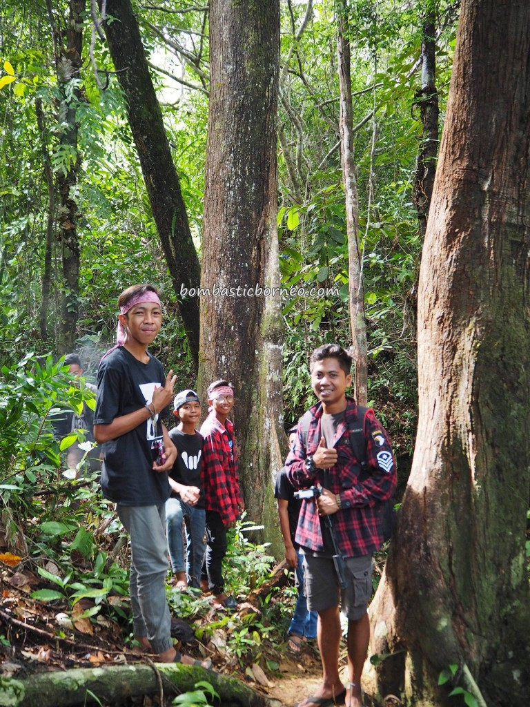 National Park, Ramsar site, outdoor, backpackers, destination, biodiversity, peat swamp forest, Borneo, Kapuas Hulu, West Kalimantan, Pulau Sepandan, island, tourist attraction, travel guide, transborder, 婆罗洲湖,