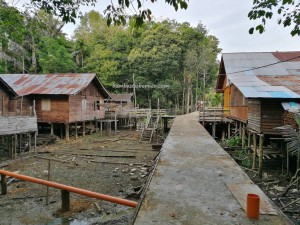 Rumah Betang Panjang Kedungkang, authentic village, backpackers, destination, Borneo, Kalimantan Barat, Batang Lupar, Sepandan, native, tribe, obyek wisata, Tourism, travel guide, Taman Nasional danau sentarum, 西加里曼丹, 原著民长屋