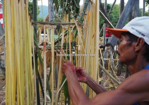Thanksgiving Harvest Festival, authentic, Borneo, Indonesia, Desa Tangguh, Dusun Betung, dayak bidayuh, tribal, tribe, ceremony, culture, tourist attraction, travel guide, village, transborder, 婆罗洲丰收节日