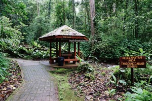 Tambunan, Mahua Rainforest Paradise, chalets, air terjun, nature, outdoor, conservation, Taman Banjaran Crocker, backpackers, Borneo, Interior Division, Malaysia, Tourism, tourist attraction, travel guide, transborder,